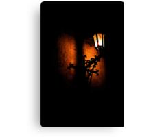 Lantern, its light and shadow Canvas Print