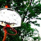 broken hoop by Jennifer  Hammann