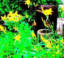 yellow and green by Jennifer  Hammann