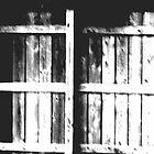 old wood fence by Jennifer  Hammann
