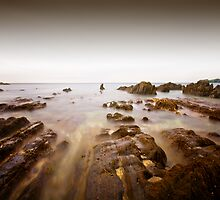 Burgh Island, Devon by greenbunion