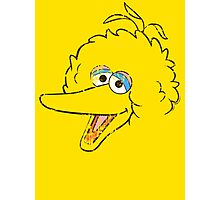 Big Bird Face Photographic Print