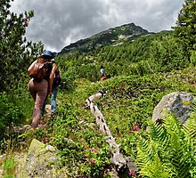 Tourists climbing the Pirin mountain in Bulgaria by atomov