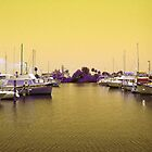 Yellow Sky Marina by Sheila McCrea