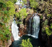 Florence Falls, Litchfield National Park by Sue Wilson (Kane)