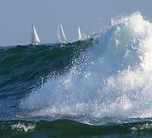 Sailing on the waves by Elenne Boothe