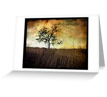 Memory Of Trees Greeting Card