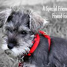A Special Friend is a Friend For Life (GC) by Dave Law