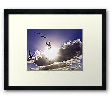 FLYING INTO THE LIGHT Framed Print