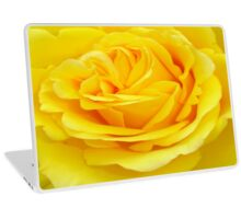 Beautiful Yellow Rose Closeup  Laptop Skin