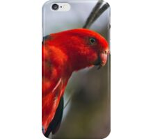 Todays Visitor iPhone Case/Skin