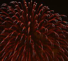 Fire Flower 2 by Wendella Reeves