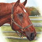 Race horse watercolor by Mike Theuer