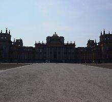 Blenheim Palace by Richard Elston