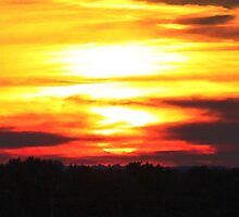 Sunset in Burnt Orange (panorama) by Mark A. Queen