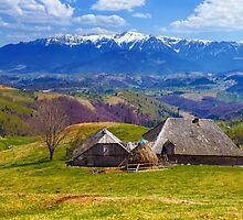 Wooden house and mountains panorama by naturalis