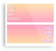 The Front Bottoms Peach Gradient  Metal Print