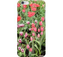 Garden of Multicolored Tulips - Nature Photography iPhone Case/Skin