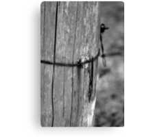 Wrapped Wire Canvas Print