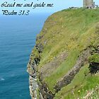 psalm 31:3 by RichTapestry