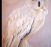 Owl Oil painting of a Barn Owl by coolart
