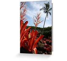 Maui Plantation Greeting Card