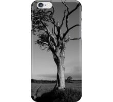 Ageing Gracefully iPhone Case/Skin