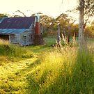 Gooandra Homestead, Kosciuszko, New South Wales, Australia by Michael Boniwell