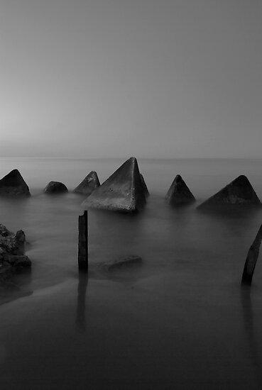 Misty by Shane Shaw