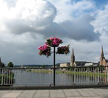 Flowers on Ness Bridge by jacqi