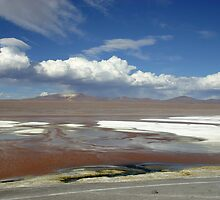 Laguna Colorada by HappyYakImages