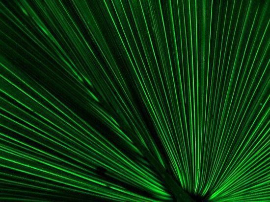 Green Leaf by TerraChild