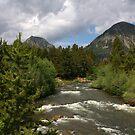 Summertime in Colorado by Patricia Montgomery
