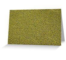green seeds Greeting Card