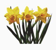 Daffodil Trio Kids Clothes