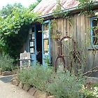Old country shop by annierose