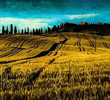 Country in Tuscany by Prussia
