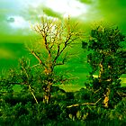 Haunted Green by Keith McHugh