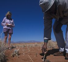 Exploring the Namib Desert with expert guides by Wild at Heart Namibia
