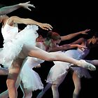 Ballet show #14 by Moshe Cohen