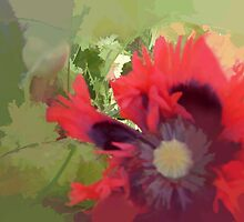 abstract of Big Frilly Poppy by hilarydougill