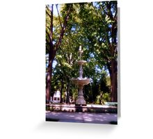 West park, Allentown Pa. Greeting Card