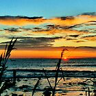 Long Island Sunrise by DJ Florek