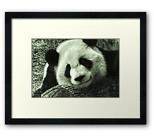 Mei Lan Framed Print