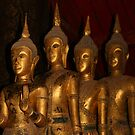 Statues of the Buddha by James Godber
