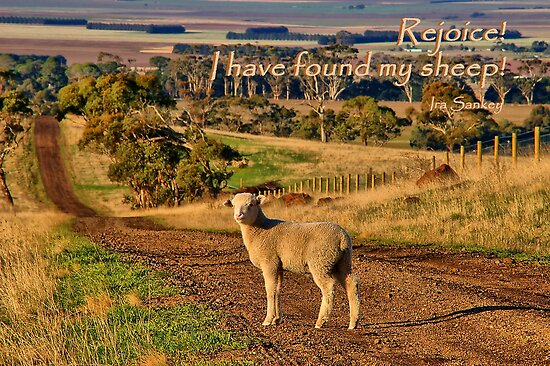 """Rejoice"" by Phil Thomson IPA"