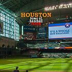 Astros Baseball by don thomas