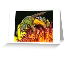 Pollen Party Pooper ! Greeting Card