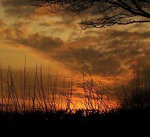 Devon Dawn by lezvee