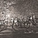Dusk at Champoeg Park by Deri Dority